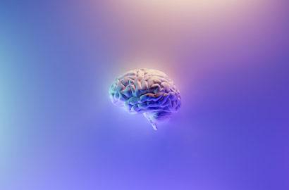 Neurociencia del emebarazo